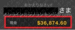 クイーンカジノ残高画像