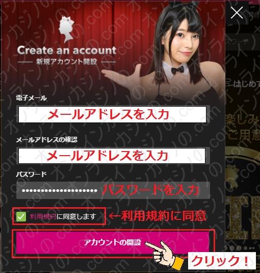 クイーンカジノ登録方法入力画面の画像